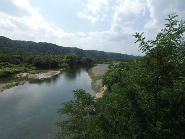 12_多摩川AB_2019.08.17.JPG